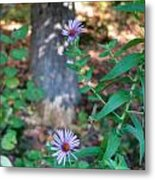 Paradise Springs Flowers 1 Metal Print