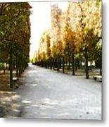Parisian Park Walkway Metal Print