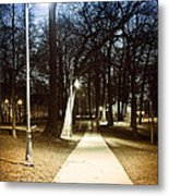 Park Path At Night Metal Print by Elena Elisseeva