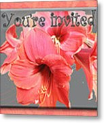 Party Invitation - Amaryllis Flowers Metal Print