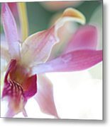 Passion For Flowers. Sensualite Metal Print