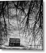 Past The Woods Metal Print