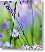 Pastel Wildflowers Metal Print by David Lade