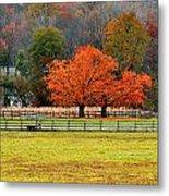 Pastoral Autumn Metal Print