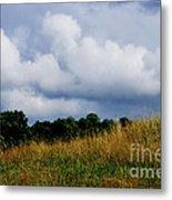Pasture Field And Stormy Sky Metal Print