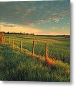 Pasture Sunrise Metal Print