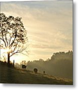 Pasture Sunrise Metal Print