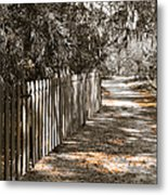 Path Along The Fence Metal Print