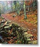 Path Through Forest, Shenandoah Metal Print