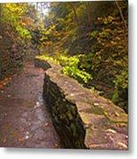 Path Through The Gorge Metal Print