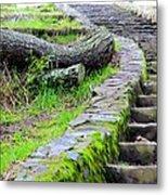 Paths Unlimited Metal Print