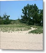 Pathway From Beach Metal Print