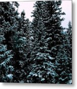 Pat's Winter Trees 1d Metal Print