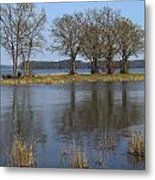 Peace And Reflection Metal Print
