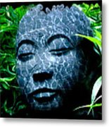 Peace And Tranquility Metal Print by Bill Cannon