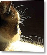 Peace Within Metal Print