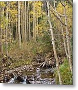 Peaceful Aspens Metal Print