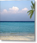 Peaceful Tropical Beach With One Palm Tree Metal Print