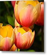 Peachy Tulips Metal Print