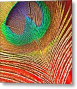 Peacock Feather 2 Metal Print
