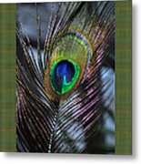 Peacock Feather Ll Metal Print