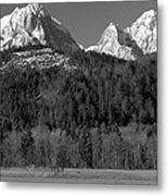 Peaks Near Schwangau In The Bavarian Alps Metal Print