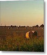 Peanut Field Bales At Dawn 1 Metal Print