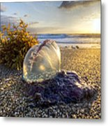 Pearl Of The Sea Metal Print