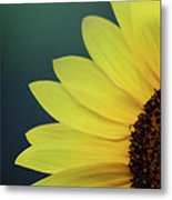 Pedals Of Sunshine Metal Print