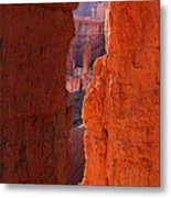 Peek A Boo Trail 3 Metal Print