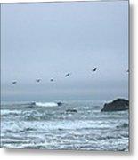 Pelican 2 Oregon Coast Metal Print