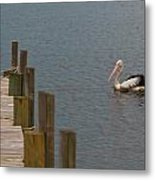 Pelican In The Water Next To A Timber Landing Pier Metal Print