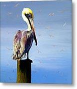 Pelican Perch Metal Print by Suni Roveto