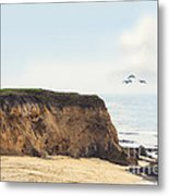 Pelican Point Metal Print