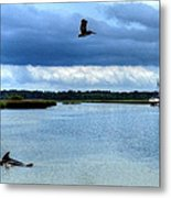 Pelican Porpoise And Pirate Ship Metal Print