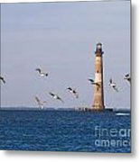 Pelicans And Morris Island Light 2 Metal Print