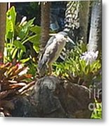 Perched Bird Metal Print by Silvie Kendall