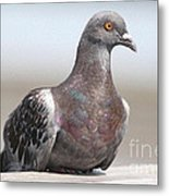 Perched On The The Dock Of The Bay Metal Print