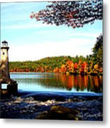 Perfect At Lake Potanipo Metal Print