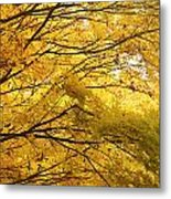 Perfect Autumn Metal Print