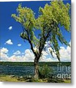 Perfect Picnic Spot Metal Print