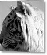 Perfect Profile In Black And White Metal Print