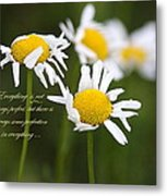 Perfection In The World Metal Print
