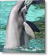 Performing Dolphin Metal Print