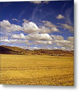 Peruvian High Plains 2 Metal Print