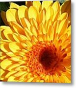 Petals Of Yellow Metal Print