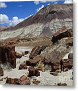 Petrified Forest 2 Metal Print