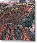Petrified Forest National Park Metal Print