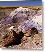 Petrified Logs In The Badlands Metal Print