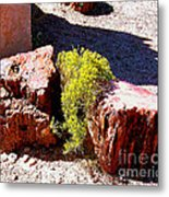 Petrified Tree Stumps In Arizona Metal Print